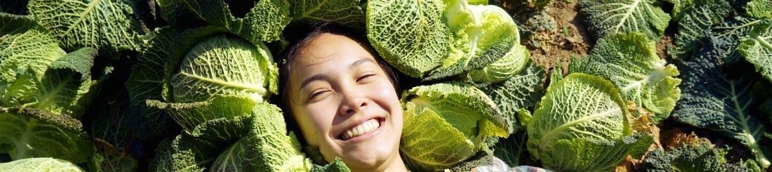 Brassica gleaning
