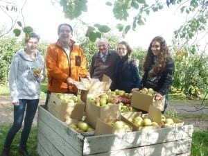 Apple gleaning - Limburg - Oct 2014