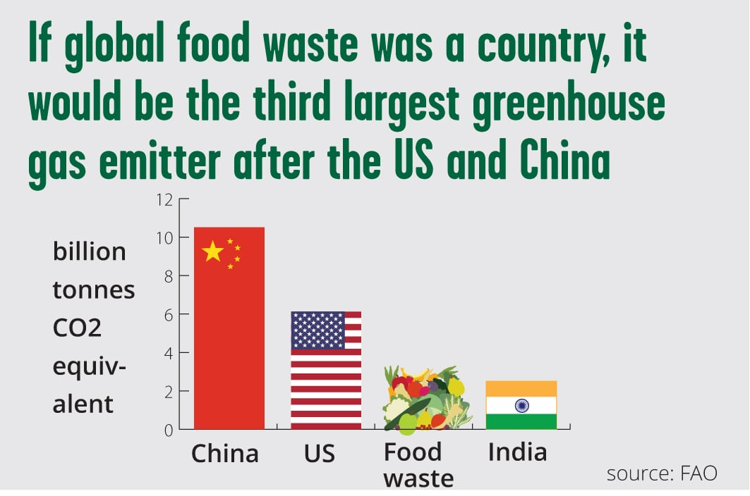 Fao Australia Food Waste
