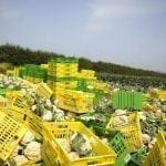 Waste in supply chains
