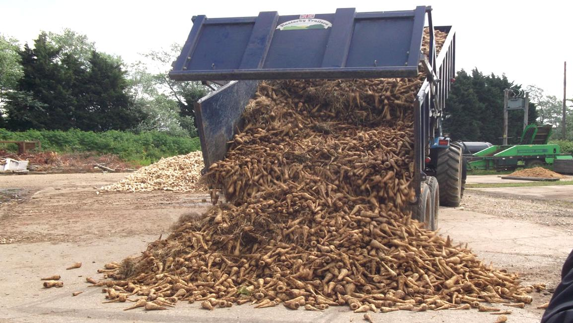 The Figures Are In: The on-farm food waste mountain
